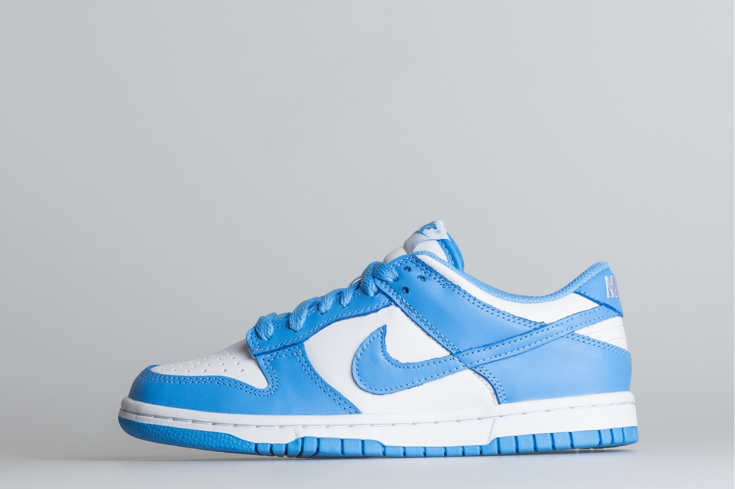 Dunk Low GS-1