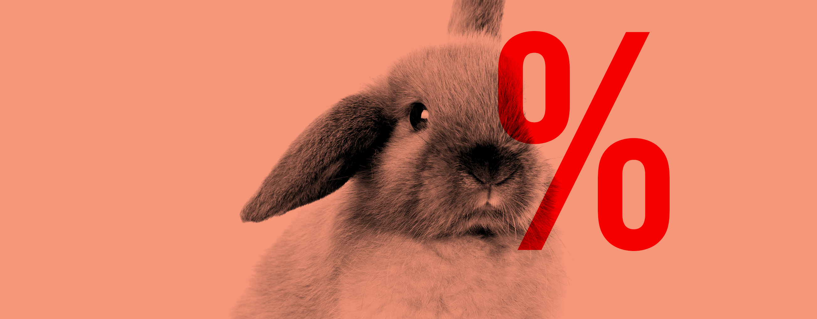 EASTER SALES - UP TO 50% OFF